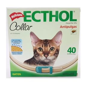 Holliday-Ecthol-Collar-Gatos