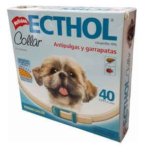 Holliday-Ecthol-collar-Perro-Chico