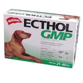 Ecthol-GMP-de-21-a-40-kg
