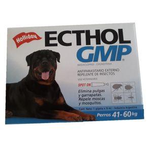 Ecthol-GMP-de-41-a-60-kg