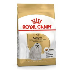 royal-canin-maltese
