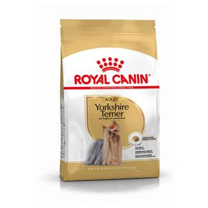 royal-canin-yorkshire