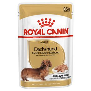 royal-canin-dachshund
