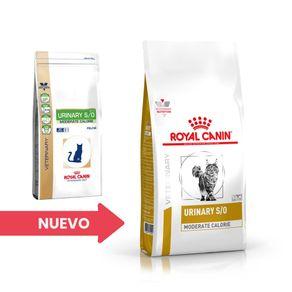 cambio-imagen-royal-urinary-feline