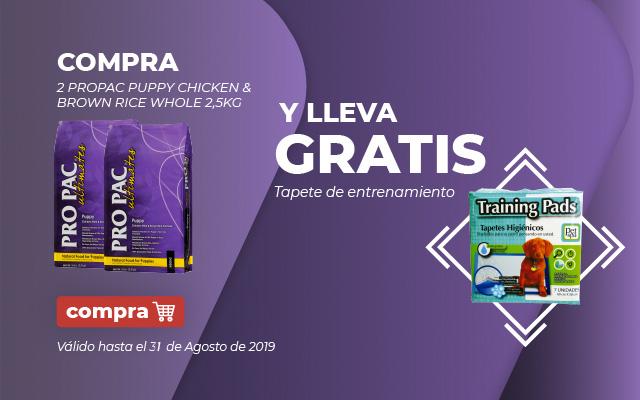 Propac gratis training pads