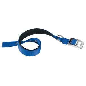 Collar-Daytona-25-53-Azul