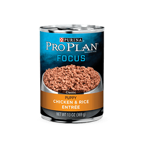 PRO-PLAN-FOCUS-Puppy-Chicken---Rice-368.5g--185GR-