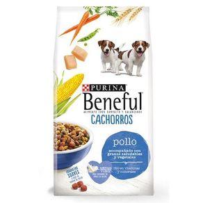 Beneful--cachorro-healthy