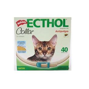 collar-ecthol-gato