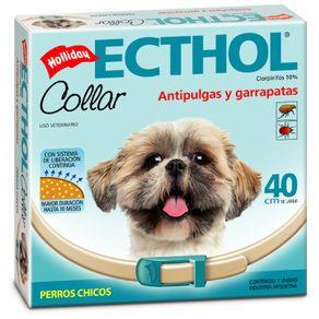 ecthol-perros-chicos